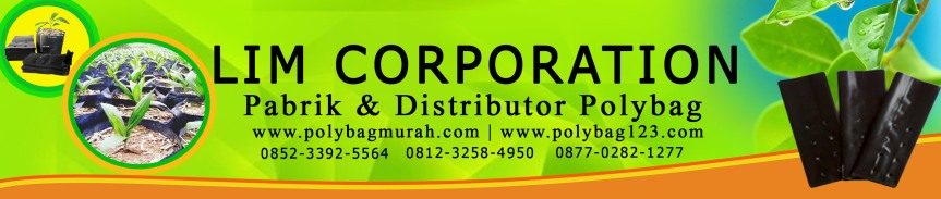 banner wodpress polybag 2