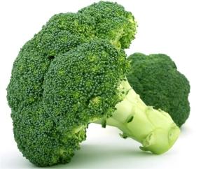 Broccoli-Seed-50-Seeds-Of-Each-Pack-Brassica-Oleracea-font-b-Green-b-font-font-b