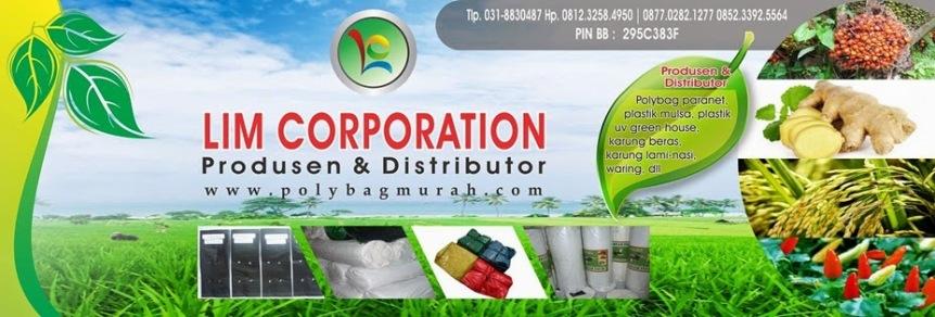 Lim Corporation 5