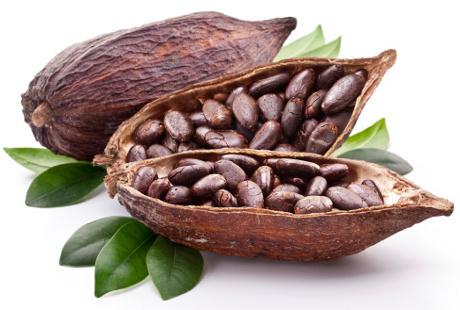 kakao-coklat