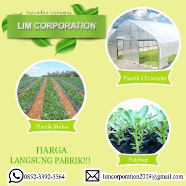 lim-corporation-1