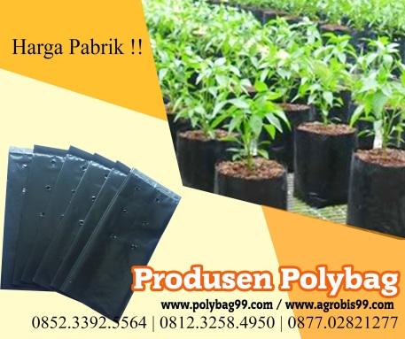 poly-bag