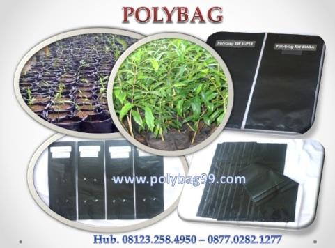 polybag-2