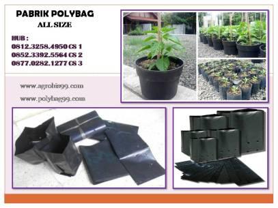 polybag123