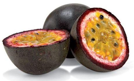 distributor-buah-markisa-murah