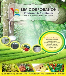 Lim Corporation 8