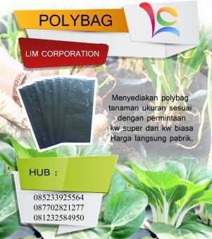Polybag 13