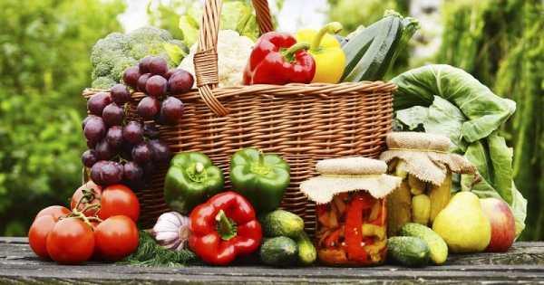 Pola Diet Untuk Autoimunitas